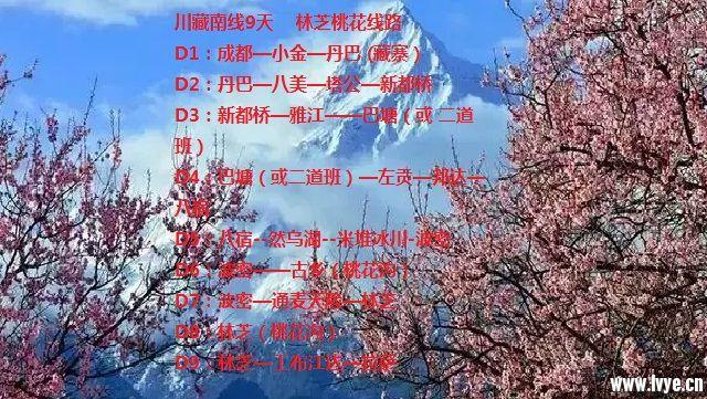 微信图片_201801091429105.jpg