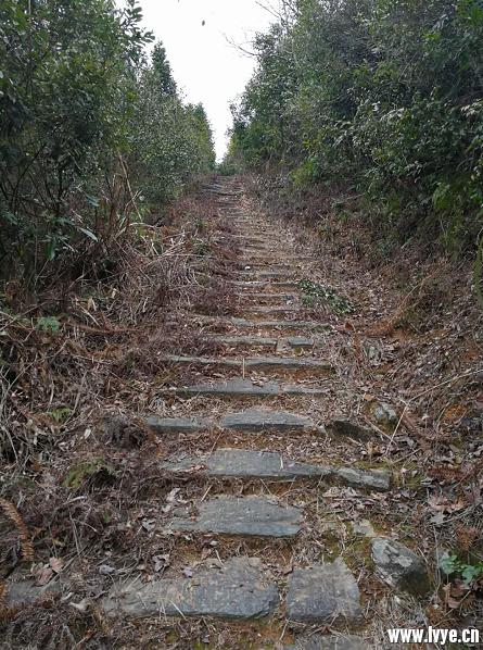 洪源岭古道