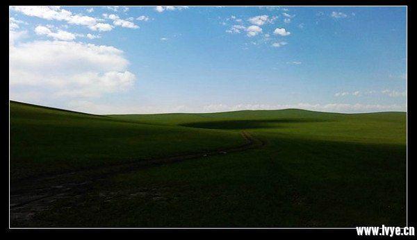 草原.jpg