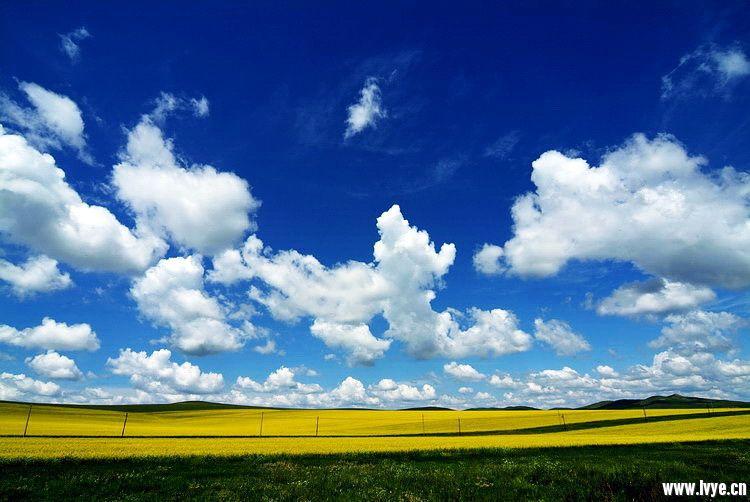风景.jpg