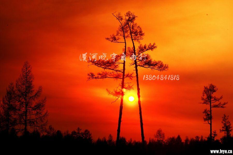 春.夕阳.jpg