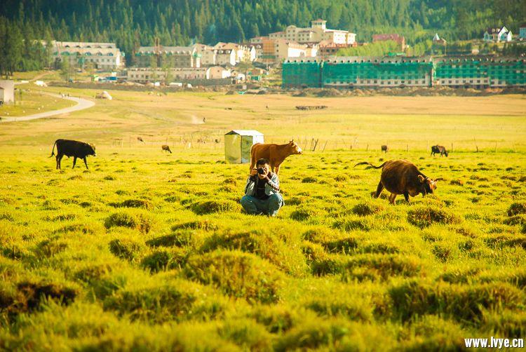 2008-Xinjiang-4750.jpg