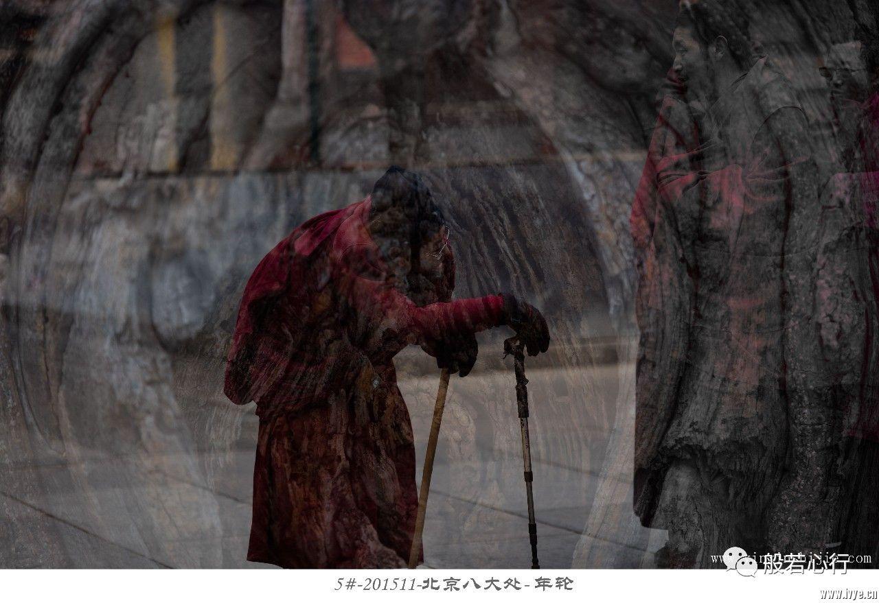 5#-201511北京八大处-年轮.jpg