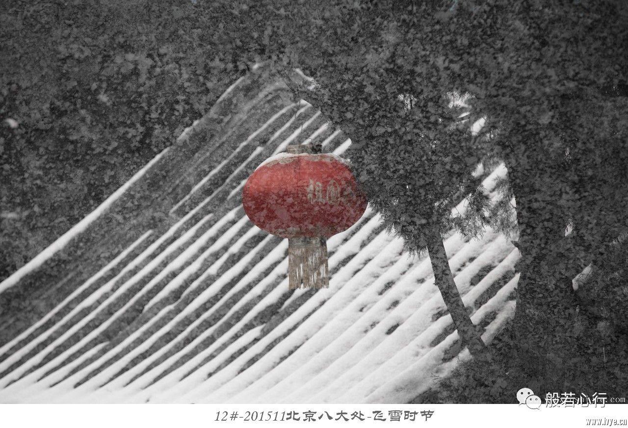 12#-201511北京八大处-飞雪时节.jpg