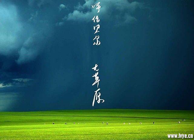 呼伦贝尔大草原.jpg