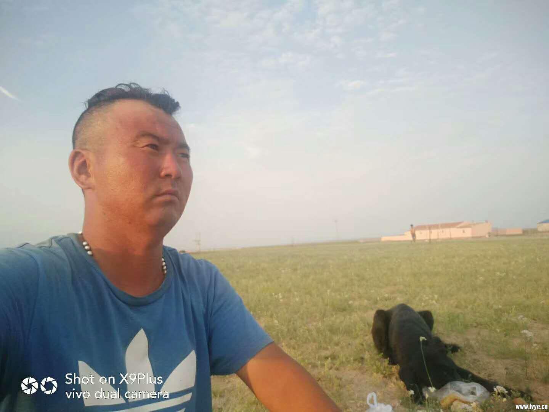 苏尼特大草原