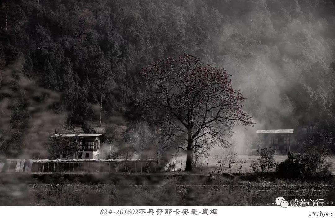 82#-201602不丹普那卡安曼-晨烟.jpg