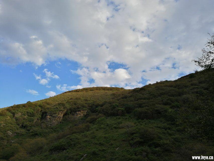 草甸景.jpg