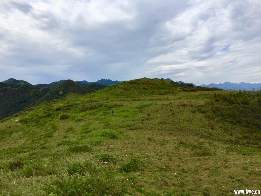 草甸风景3.jpg