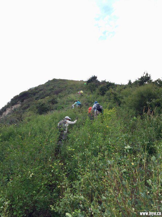 爬山3.jpg