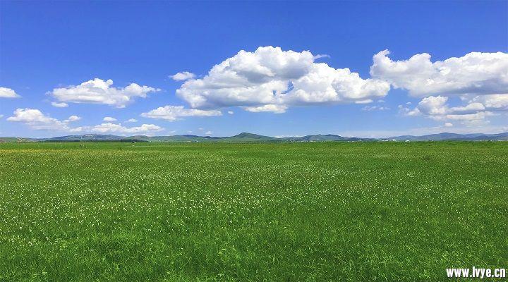 风景4.jpg