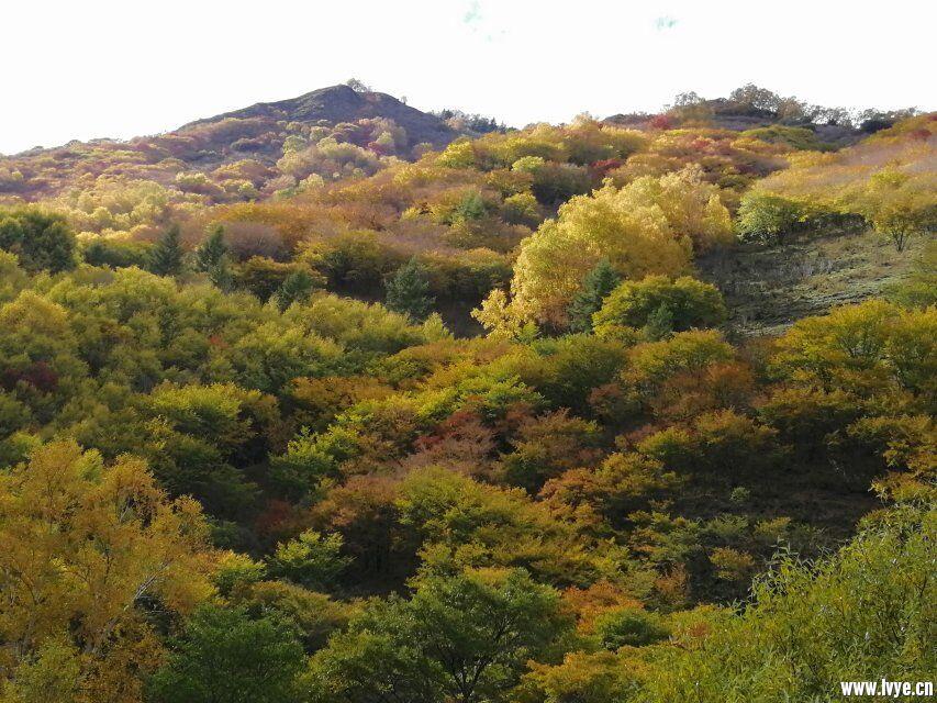 营地风景2.jpg