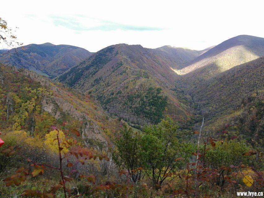 营地山顶风景1.jpg