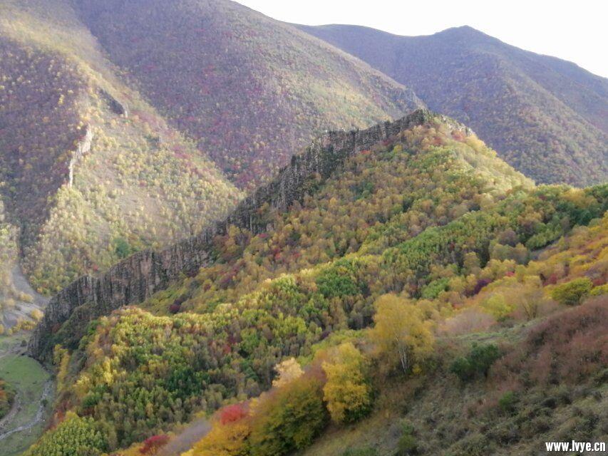 营地山顶风景4.jpg