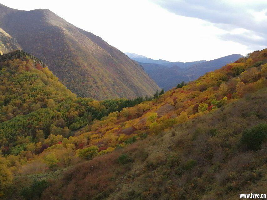 营地山顶风景5.jpg