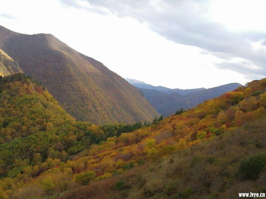 营地山顶风景6.jpg