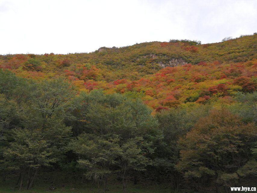 风景8.jpg