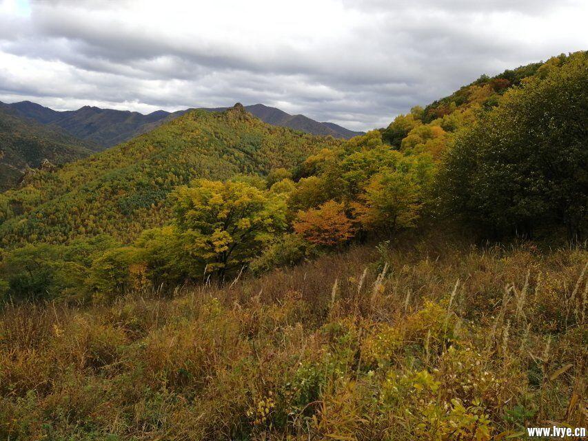 东猴顶景区附近风景2.jpg