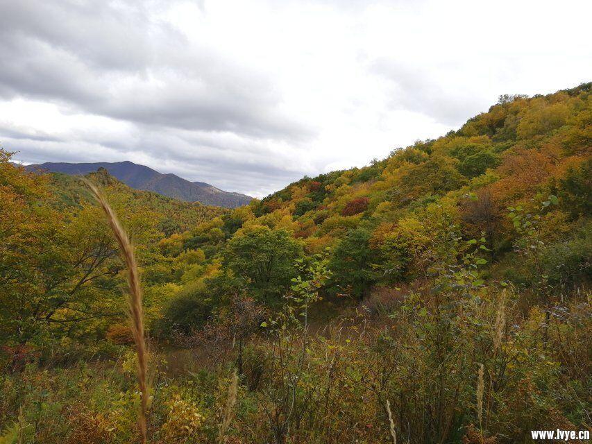东猴顶景区附近风景3.jpg