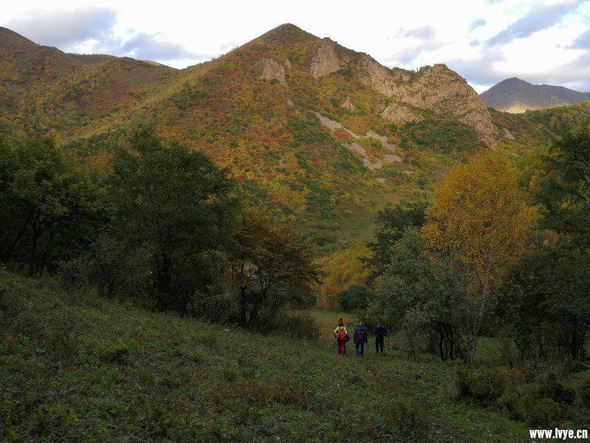东猴顶附近爬山2.jpg