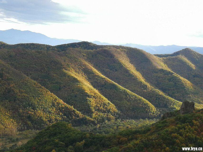 东猴顶附近爬山山顶风景2.jpg