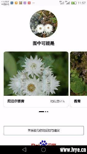 mmexport1538715239849.jpg