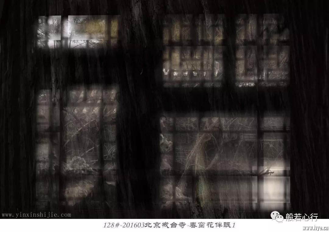 128#-201603北京戒台寺-春窗花伴眠1.jpg