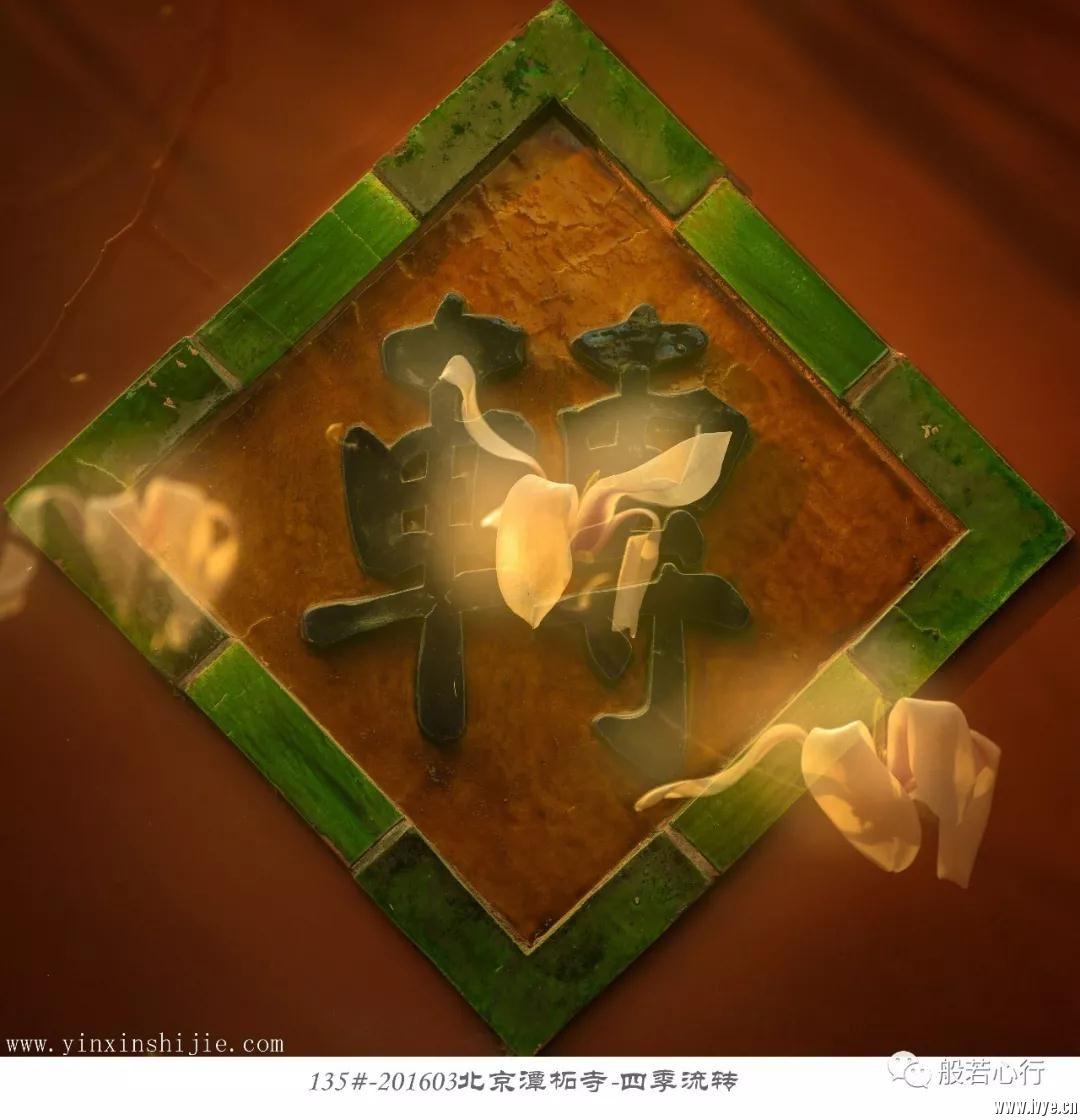 135#-201603北京潭柘寺-四季流转.jpg