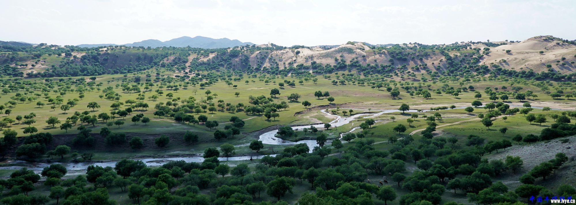 西拉木伦河峡谷2225.jpg