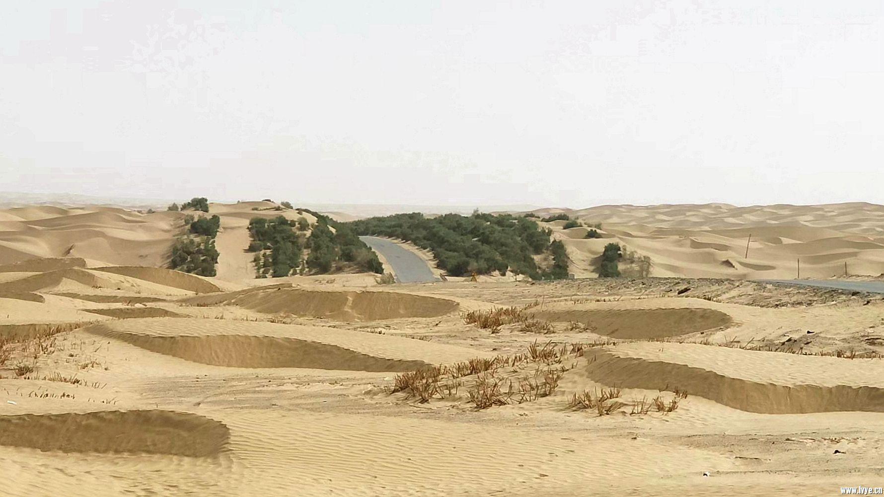 塔克拉玛干沙漠公路 (2).jpg