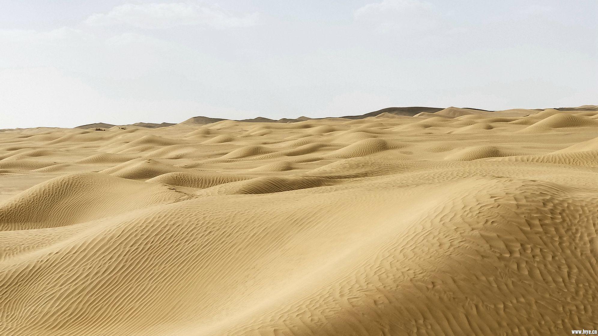 塔克拉玛干沙漠公路 (6).jpg