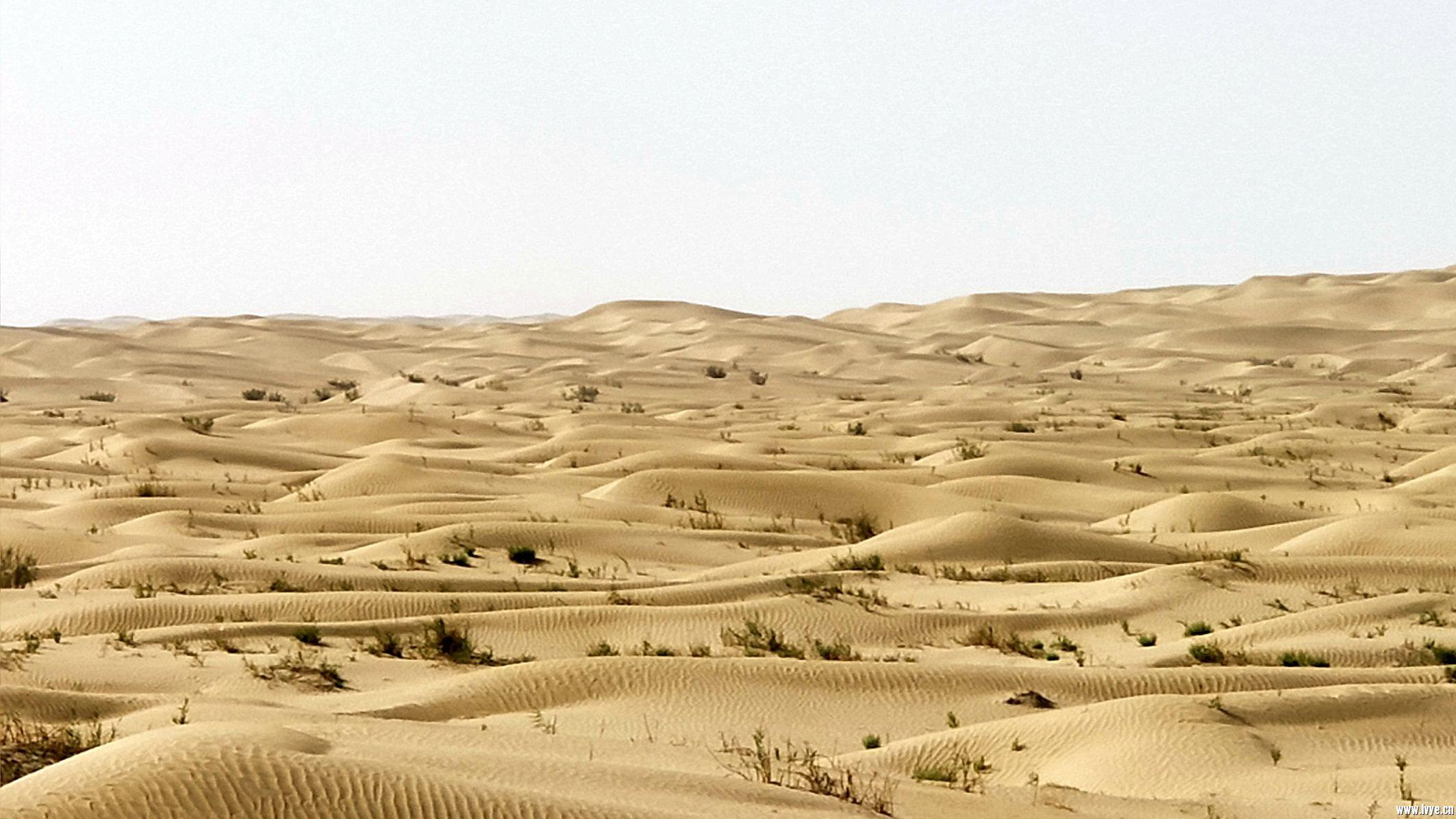 塔克拉玛干沙漠公路 (7).jpg