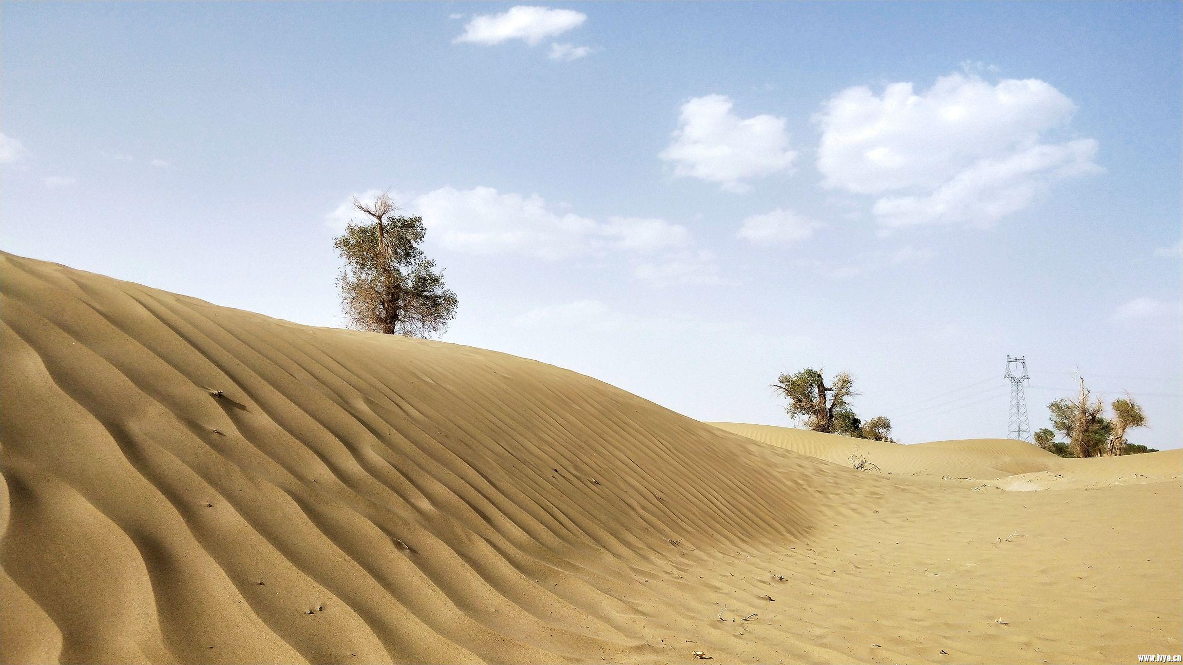 塔克拉玛干沙漠公路 (8).jpg