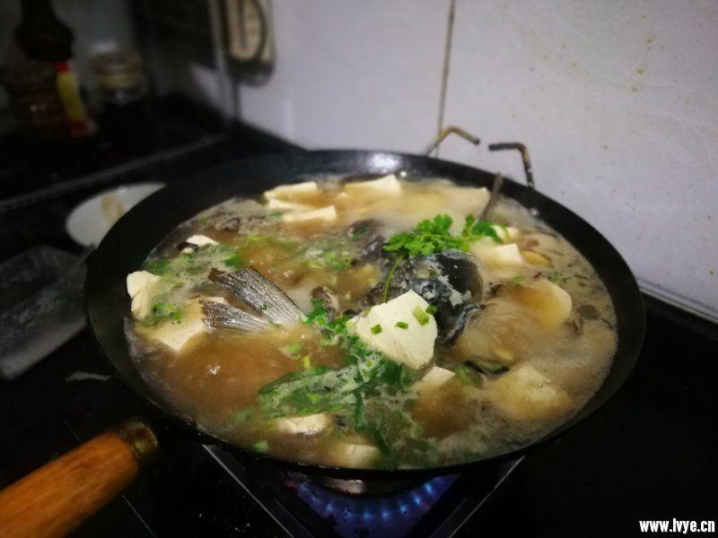 鱼头豆腐.jpg
