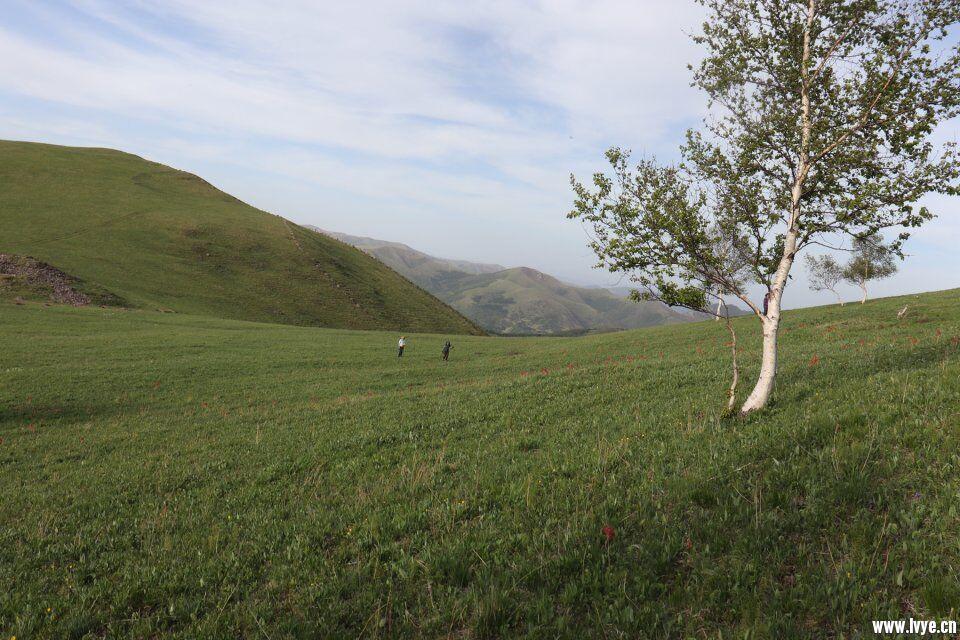 风景5.jpg