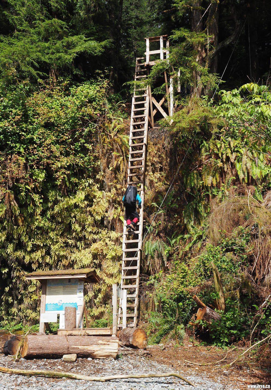 终点处郭登河北岸的木梯,图片来自艾美琳妮