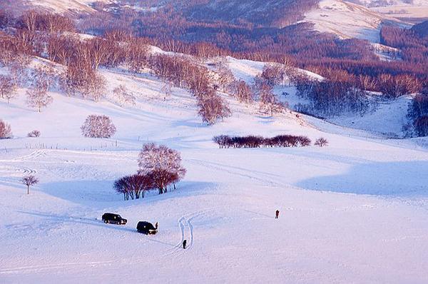 【懒人队】小队伍~冬雪红山军马场~赏雪~摄影~当地越野车