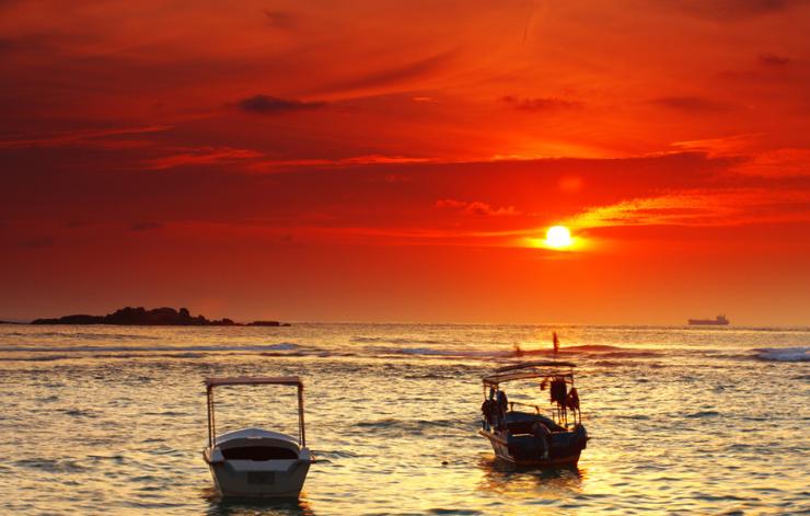 【斯里兰卡】—印度洋上的一滴眼泪,雅拉野生动物公园、出海观鲸八日深度计划