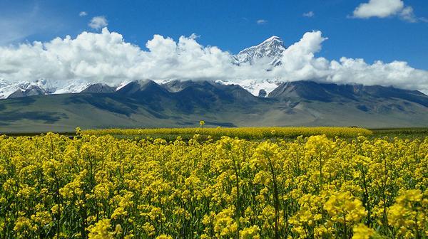 【山无棱】2014.木马年西藏转山 一次来世与今生兼修的心灵之旅(中秋活动)