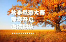 秋季摄影大赛即将开启