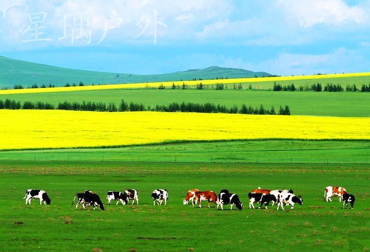 【星瑀户外】8月31号周六 张北草原骑马 可以住宿 可以扎营
