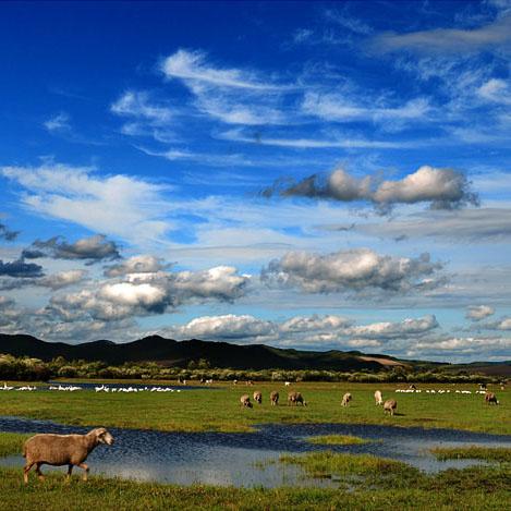 【回龙观户外】20130810-17内蒙古阿尔山-满洲里-呼伦贝尔-额尔古纳-室韦天堂草原8天梦幻之旅