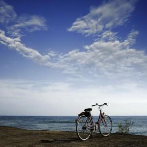 科学证明:骑单车比健走好