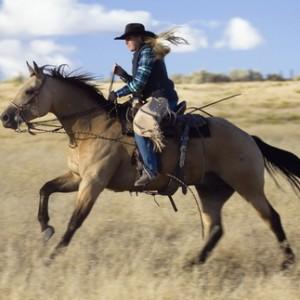 骑乘时需注意的事项 保护您和马儿的安全