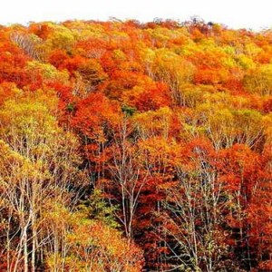 秋季登山七大注意事项