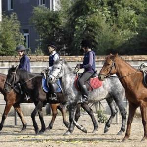 贵族运动平民会费 北京中产子弟掀骑马热