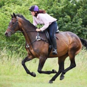 女骑手两度被摔受重伤仍欲返马背