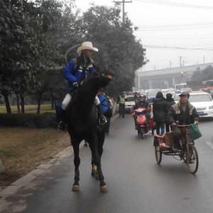 成都男子因買不到車票騎馬穿國道回家