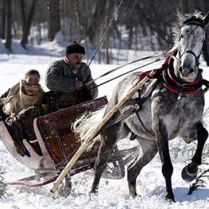 波兰人玩马拉雪橇享受冬日欢乐
