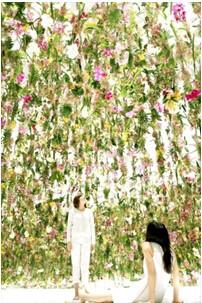 浮游花园主题:与花同根,共园1体